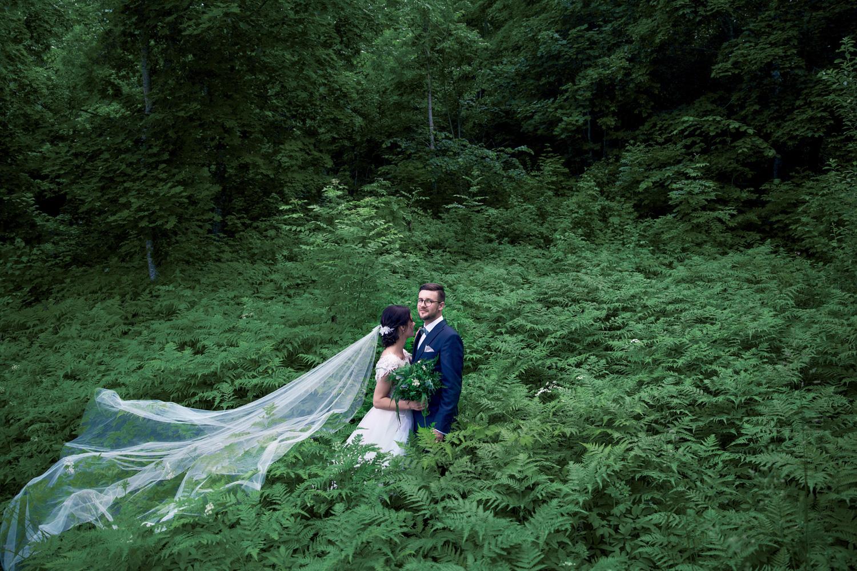 jaunavedžiai pasirinko paparčių pievą vestuvių fotosesijos vietą