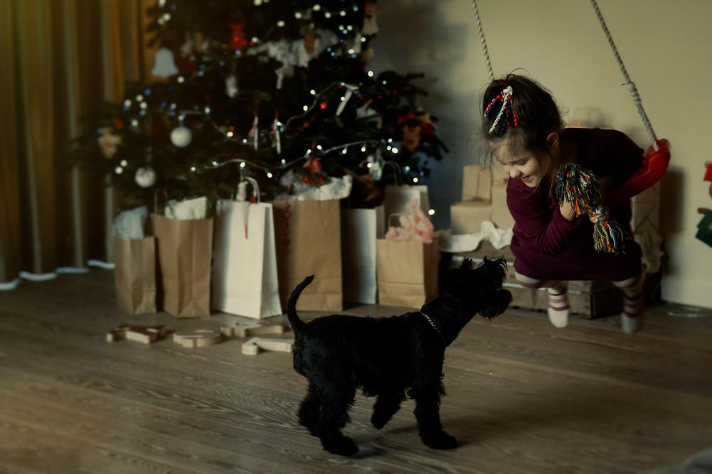 mergaitė supdamasi ant supynių žaidžia su šuniuku, tolumoje matosi Kalėdinė eglė
