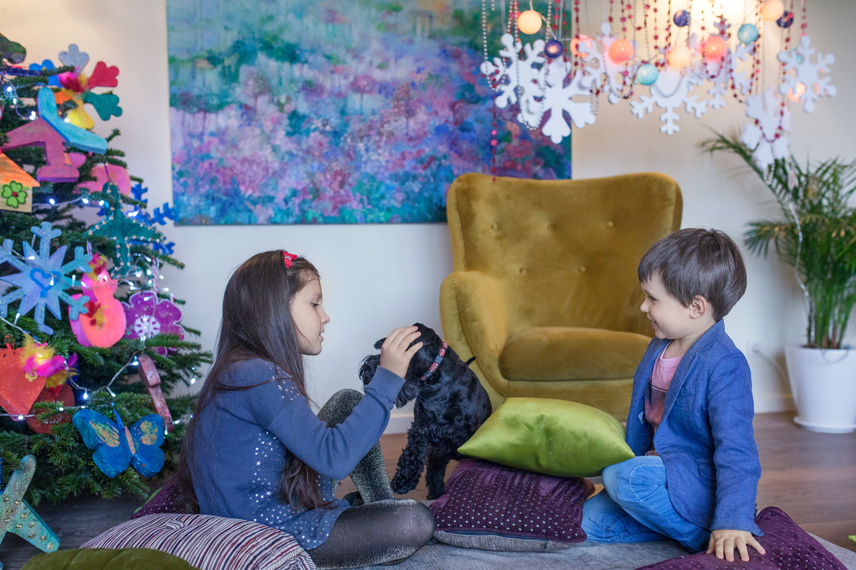 Kalėdinė šeimos fotosesija studijoje - smagus pasižaidimas su šuniuku